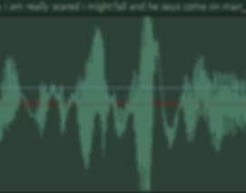 waveform4_nicky_crop.jpg