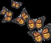 Monarch Swarm.png