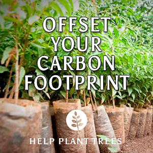 Offset Your Carbon Footprint v2 website.