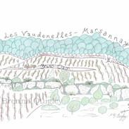 Marsannay Vaudenelles