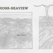RAEN Sea Field Vineyard