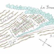 Beaune Bressandes