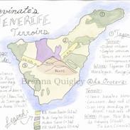 Tenerife Terroir