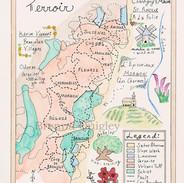 Beaujolais Terroir