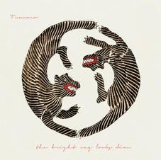 the bright way looks dim album cover 1.j