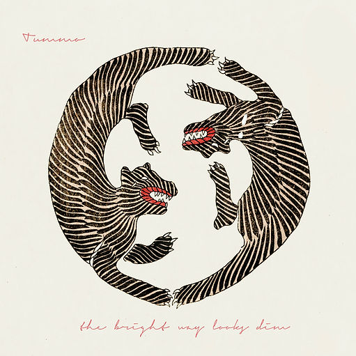 the bright way looks dim album cover 1.j