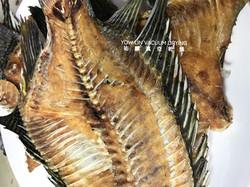 台灣鯛片 Taiwan Tilapia fillet