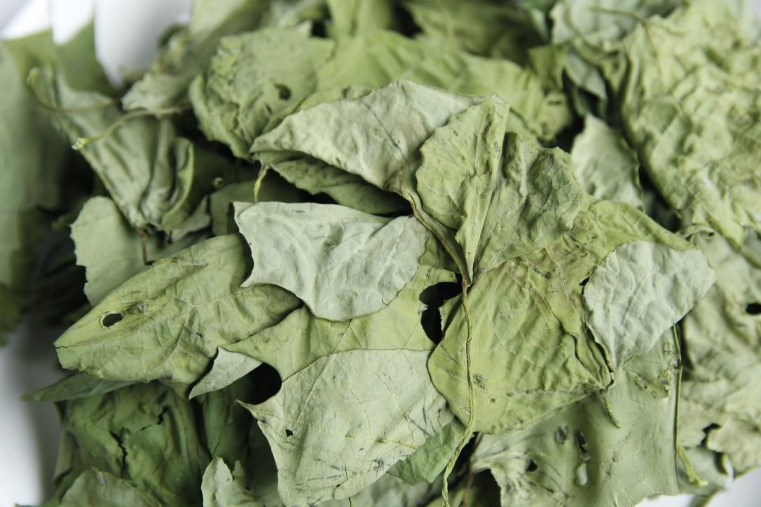 地瓜葉 Sweet potato leaves