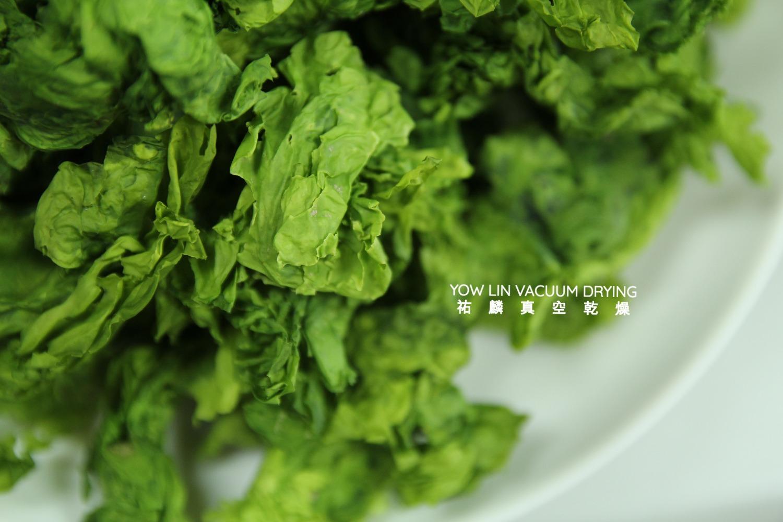海藻  Seaweed