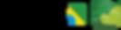 46 anos SAFPE - logomarca-01.png