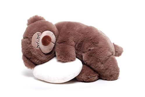 Schlummernder Bär