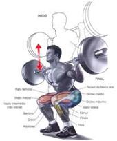 """Artigo: Goleiros e Exercícios Resistidos com Peso """"musculação"""""""