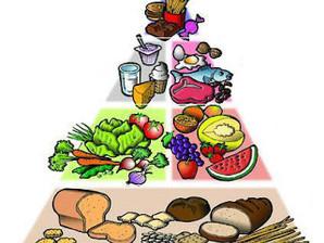 Nutrição: energia de lipídios vs. energia de carboidratos