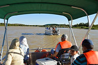 Crocodile Pools River Safaris Botswana t