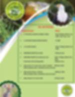 activities list.jpg
