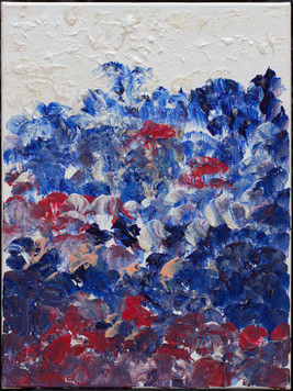 Red White and Blue Poppies