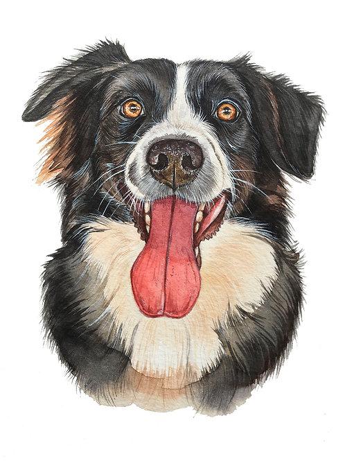 Custom Pet Watercolor
