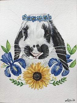 arte coelho