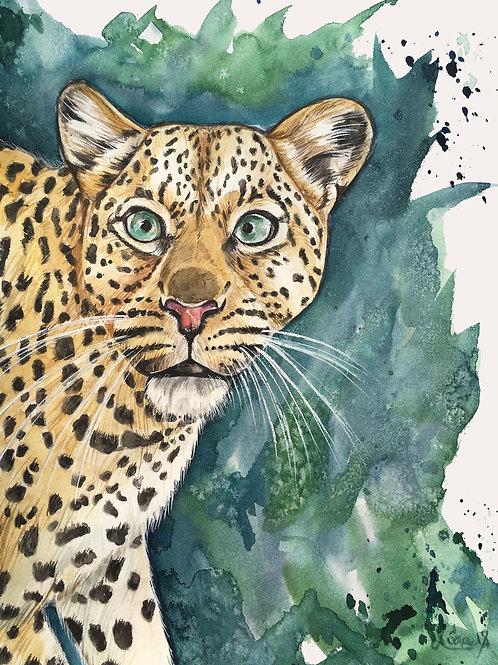 Leopard Watercolor 24x32cm