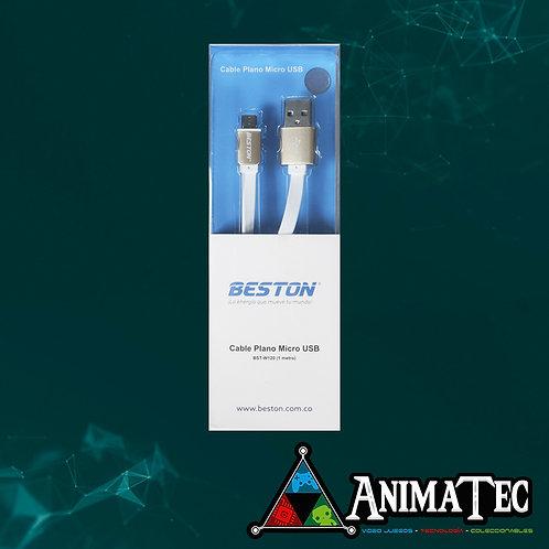 CABLE PLANO USB BESTON W120