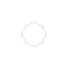 SW19B - ICONS WHITE  -04.png