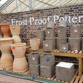 Indoor & Outdoor Pots