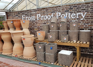 Indoor & Outdoor Pots