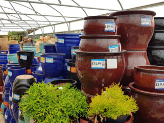 50% off selected pots