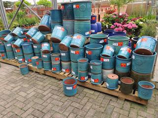 50% off selected pots