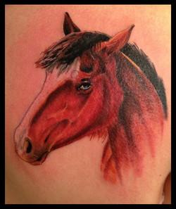 julien-eat-your-bones-tattoo-saintes-valere-tattoo-15