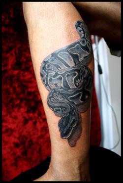 julien-eat-your-bones-tattoo-saintes-valere-tattoo-16