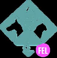Site inicio FEL.png