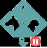 Site inicio AVC.png