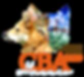 Logo CBA2020.png