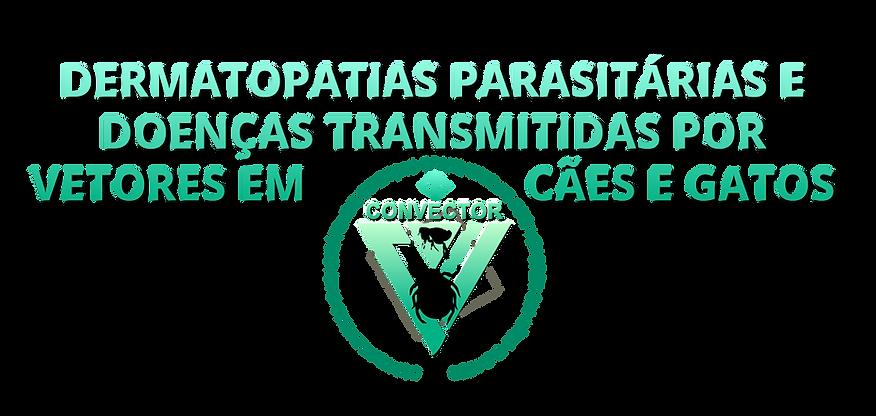 Topo site Vetores 2.png