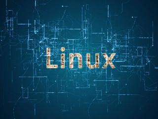 Linus Torvalds volta ao comando do Linux após licença