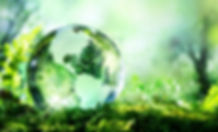 970x404-Glass_globe_in_forest.jpg