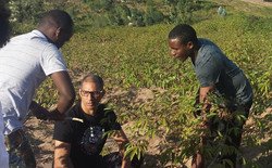 Cassava Adam Shows Glynn.jpg