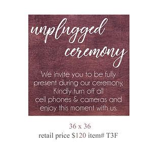 unplugged ceremony copy.jpg