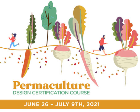 Permaculture Design Certification Course (PDC)