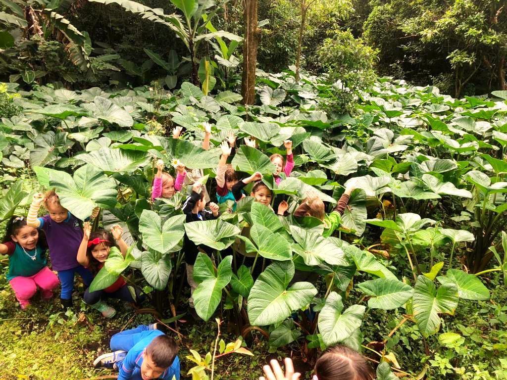 Forest School Monteverde