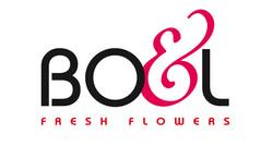 logo Boel