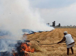 Burning-Rice Straw