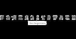 pinpoint-designs-papeterie-hochzeit-presse-hochzeitswahn