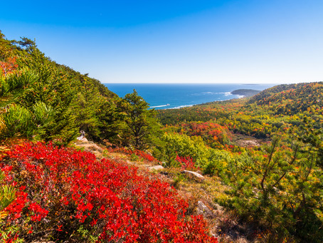 Top Fall Foliage Trips in the US