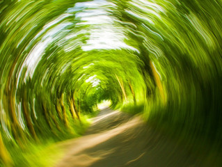 How Can A Physical Therapist Help My Dizziness?