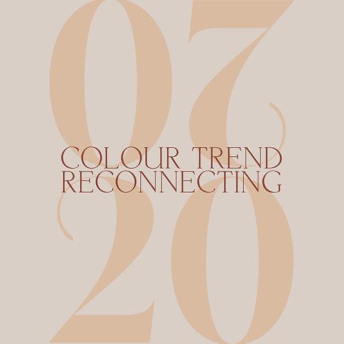 2020 Colour Trend Forecast
