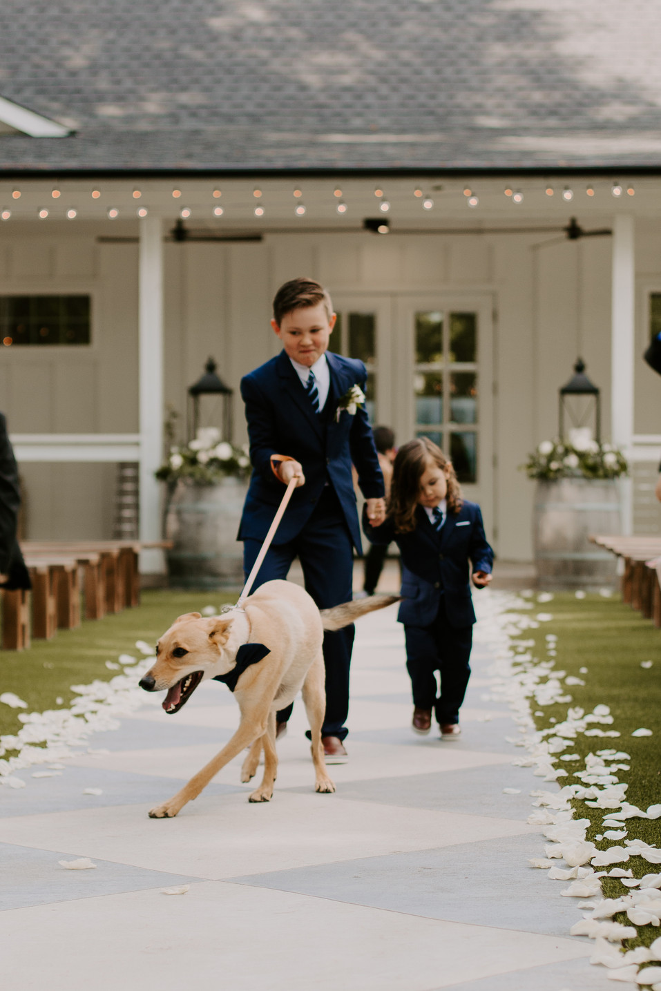 WEDDING (149 of 416).jpg