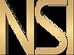 NSI Logo.png