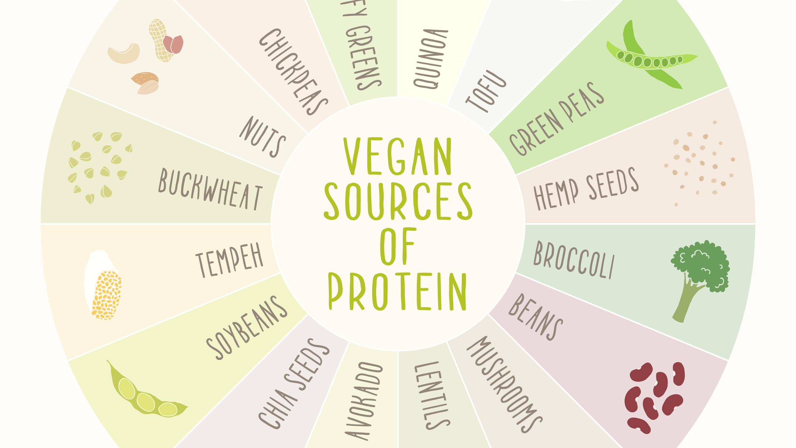 Vegan S
